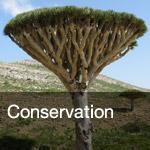 btn-conservation